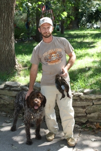 Wirehaired Pointing Griffon and Blue-Winged Teal