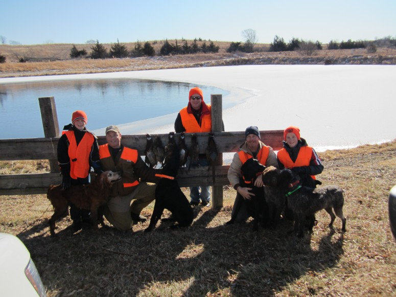 Wirehaired Pointing Griffon preserve guide dogs