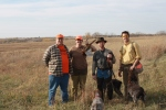 Wirehaired Pointing Griffon Nebraska Pheasant
