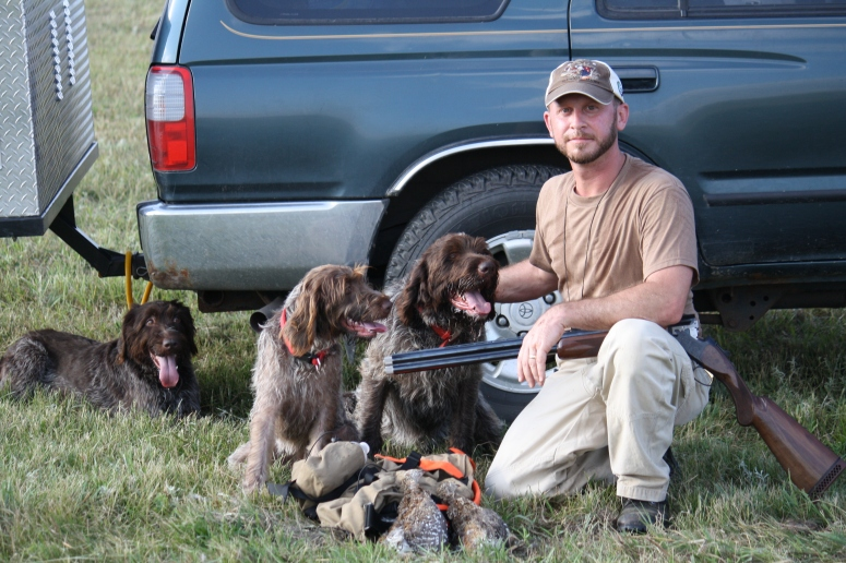 Wirehaired Pointing Griffons grouse