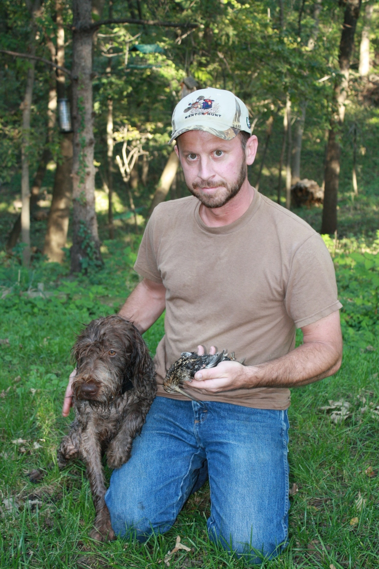 Wirehaired Pointing Griffons Snipe Hunting