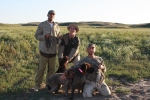 Wirehaired Pointing Griffons grouse hunting
