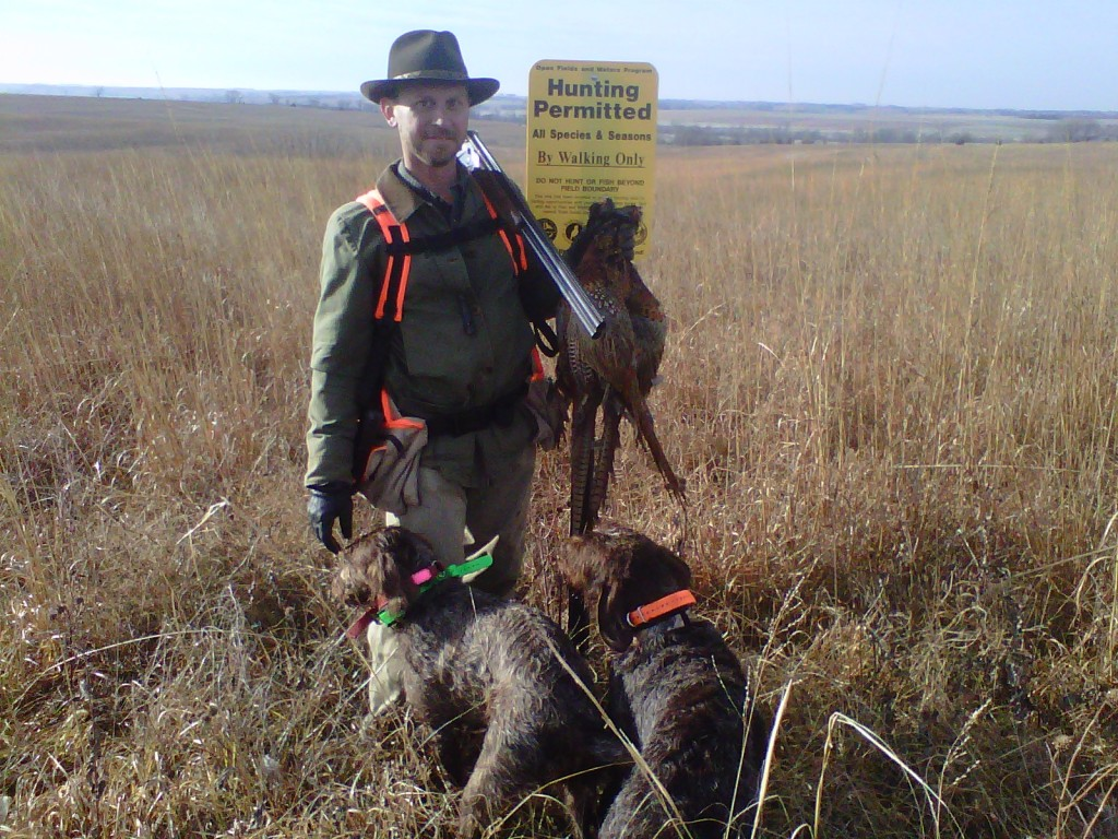 Southeastern Nebraska Pheasants