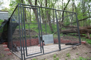 10x10x6 welded wire kennel