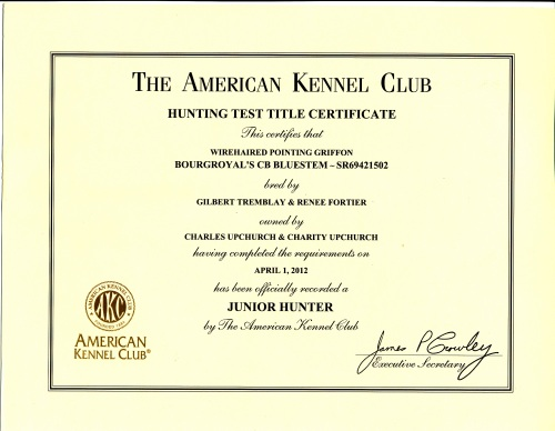 BB's AKC Junior Hunter Certificate