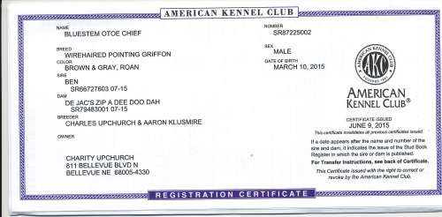 chief-akc-reg-cert