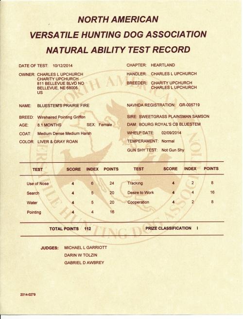 fire-na-test