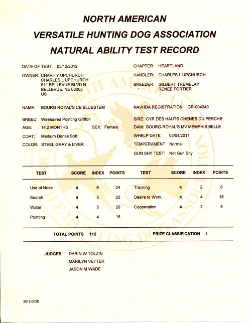 BB's NAVHDA Natural Ability Test Certificate