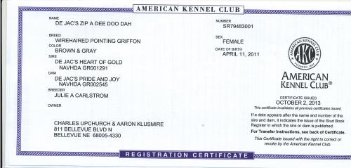 Velma's AKC Registration Certificate