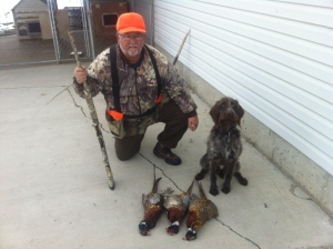 Another great day for Roxy (18 month old Wirehaired Pointing Griffon female)!