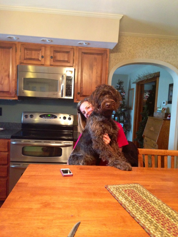 Gomer (7 mo old male Wirehaired Pointing Griffon) and Jenna are ready for a snack.