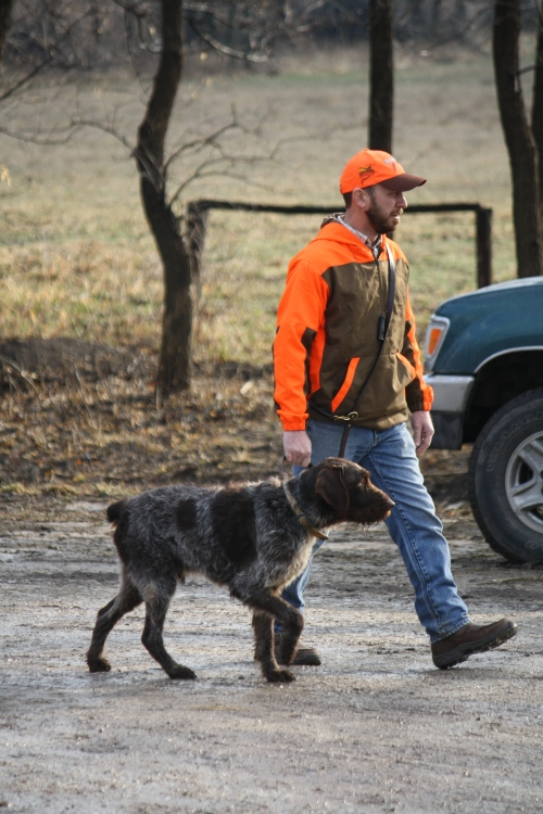 Sam and Charles (file photo from AKC test in March)