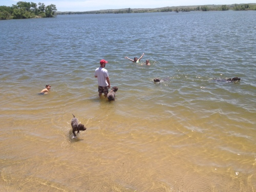 Caleb, Fire, Charles, BB, Cordelia, Conrad, Mae, and Sam at our special swimming spot