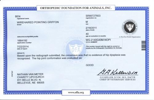 Ben's OFA certificate