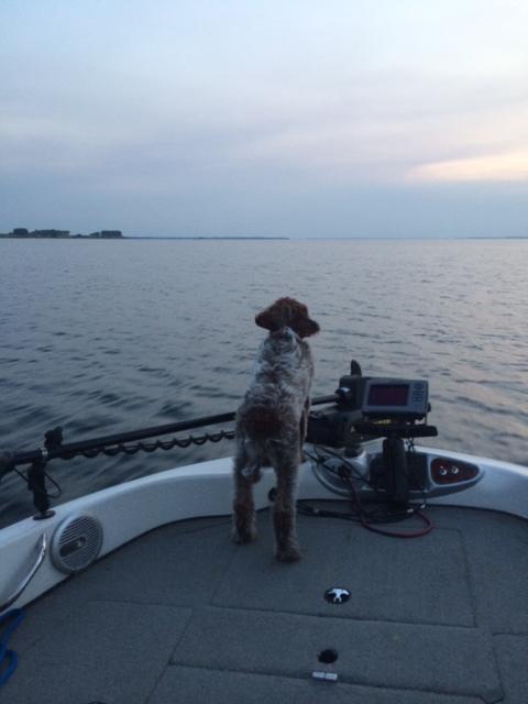Duncan on a fishing trip, waiting for hunting season.