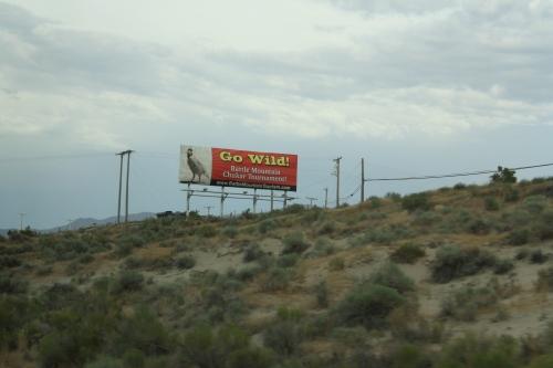 Billboard for the Battle Mountain Chukar Tournament
