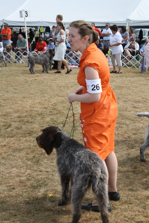 Amy and Bijou in the Best of Breed ring at the National Specialty Show