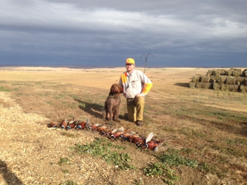 Ed, Bob, and the birds in ND.