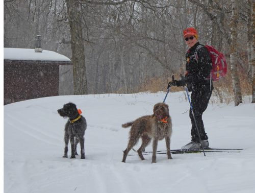 TracHer, Zephyr, and Susan enjoying the snow.