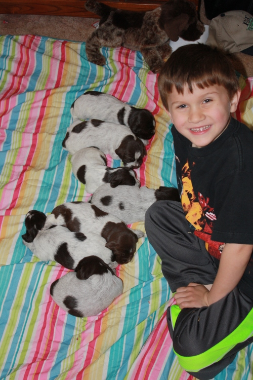 Caleb with BB's pups