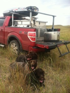 Day 2 limit, back to front: Sam, Fire, and Chief