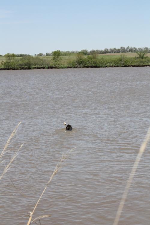 Chief Water Retrieve1