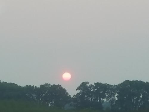 Opener 2017 Sun