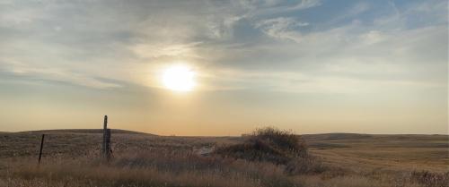 NoDak Landscape